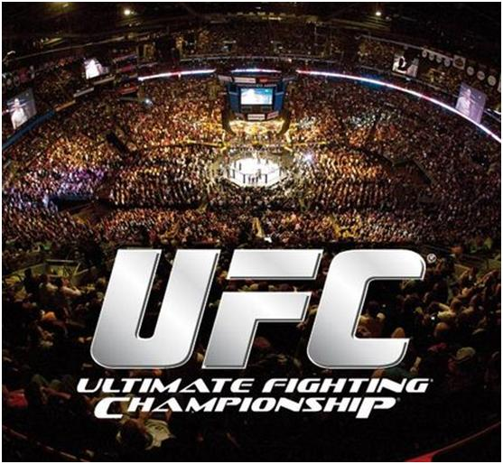 UFC Slot Game